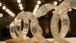 Photo: Academy award ; copyright: EHI Stiftung